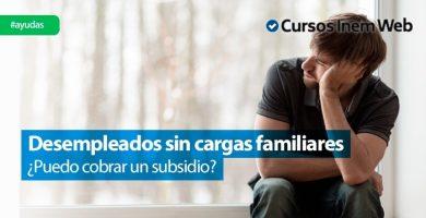 subsidio sin cargas familiares