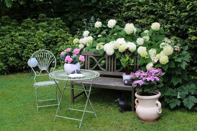 cursos de jardineria jardin ornamental