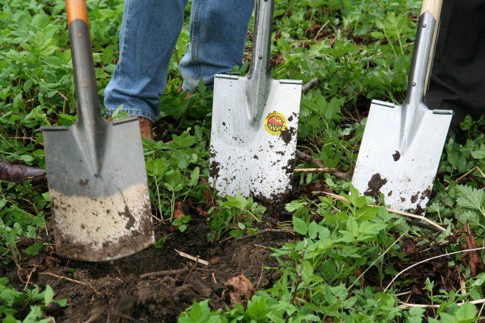 cursos de jardineria salidas profesionales