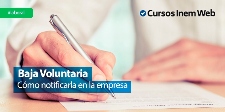Baja Voluntaria Plazos Y Carta Modelo Cursosinemweb Es