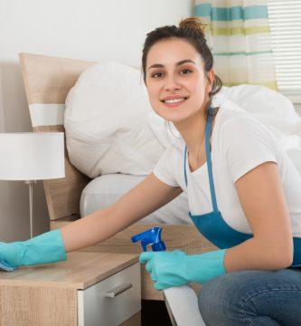 cotizaciones-seguridad-social-empleadas-de-hogar-2019
