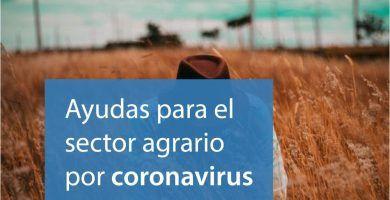 ayudas sector agrario coronavirus covid19