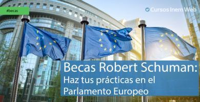 Becas Robert Schuman